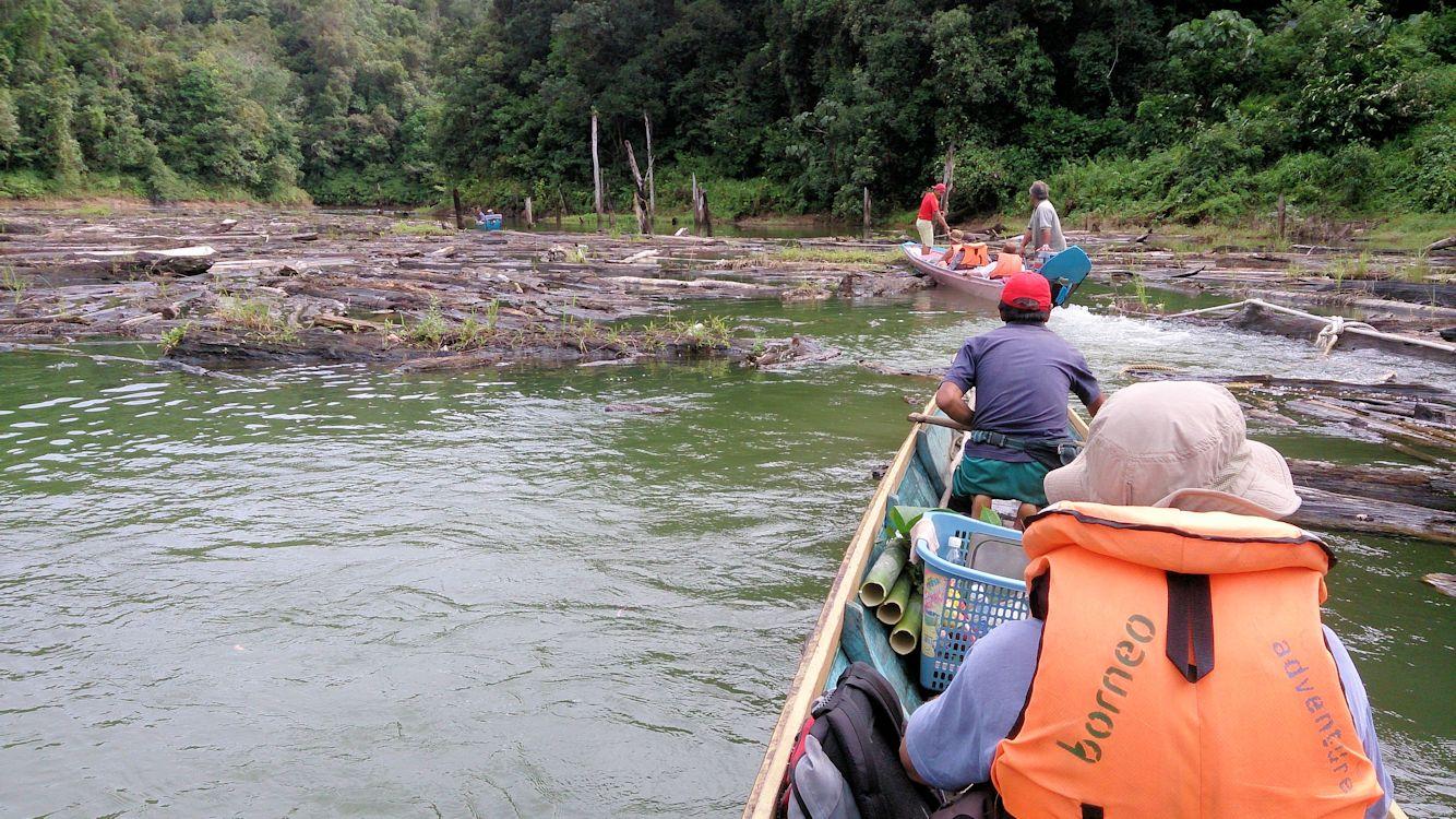 Negotiating log islands Batan Ai DT